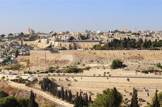 テルアビブからの8日間のイスラエル、ヨルダン、エジプトツアー