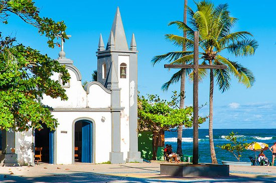 Private Tour to Praia do Forte and...