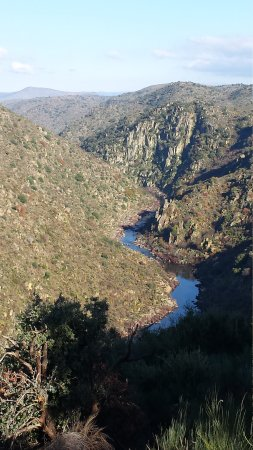 Reserva da Faia Brava: Walking the Grande Rota with a local guide you can  have magnificent views and see lots of birds