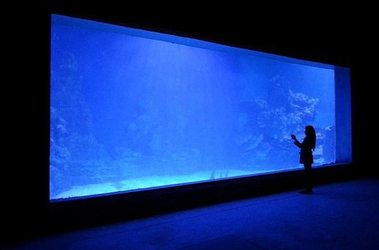 Hurghada Grand Aquarium Entrance...
