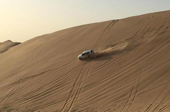 Liwa Full-Day Tour from Abu Dhabi