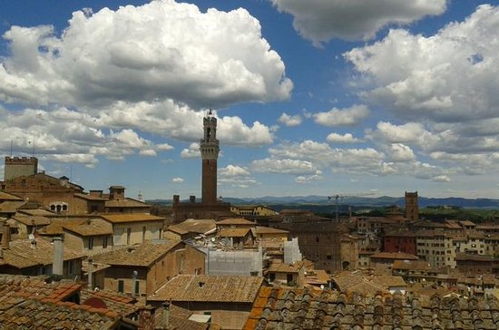 Privat Tour: Siena Walking Tour