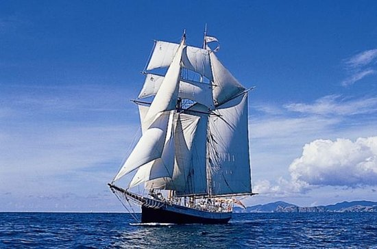 Bay of Islands Tall Ship Sailing Tour...