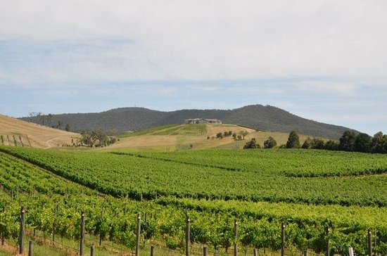 Private Yarra Valley Day Trip from...