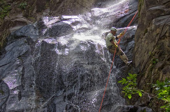 Waterfall Rappelling at Bocawina...