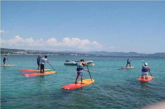 Stand Up Paddle Board Rental in La...