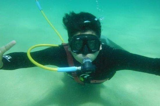 Aventura de Snuba en el Mar de Cortés desde Los Cabos