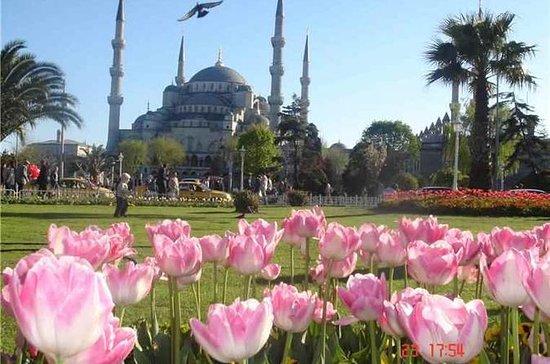 Tour a pie por Estambul Express de 3...