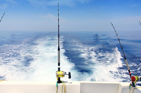 Private Tour: Deep-Sea Fishing Trip from Dubai