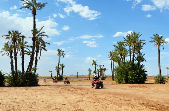 Marrakech Camel and Quad Biking Tour...