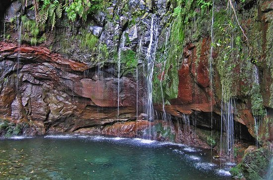 Madeira Levada Walk - Rabacal Lakes...