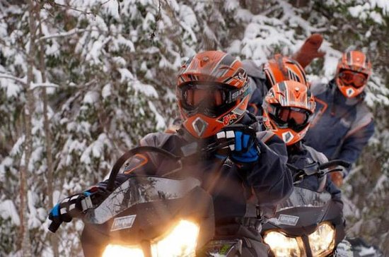Lappland Snowmobile Safari von ...