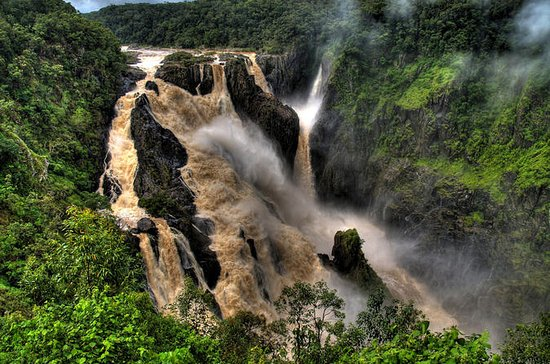 Cairns Shore Excursion: Barron Gorge ...
