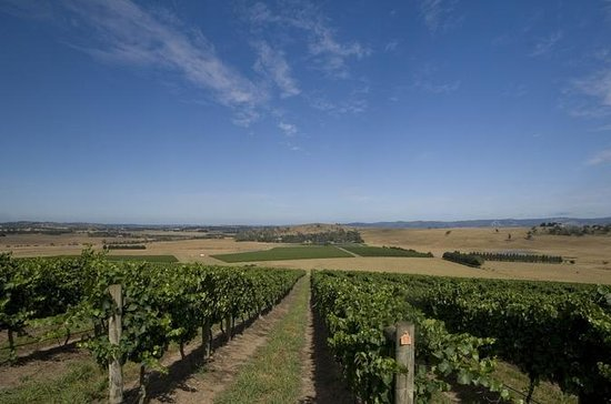 Yarra Valley Weingut Tour von ...