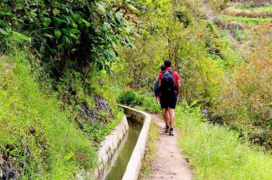 Easy Madeira Levada Walk - Maroços