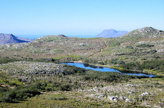 Silvermine Nature Reserve Hike desde...