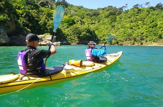 Excursión en kayak por mar guiada de...