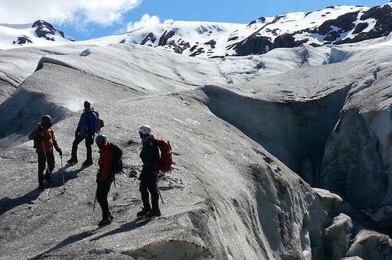 Sortie Glacier Ice Hike à Seward