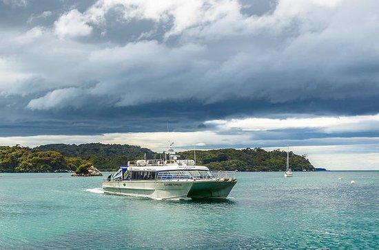 One-Way Ferry to Stewart Island from...