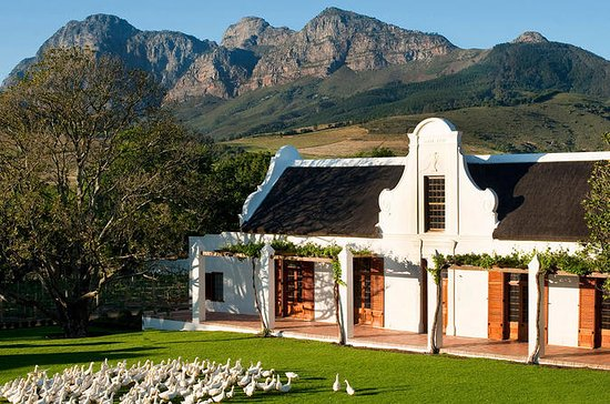 Full-Day Private Stellenbosch Wine...