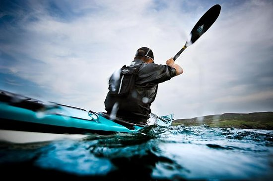 Sea Kayaking and Cape Point Private ...