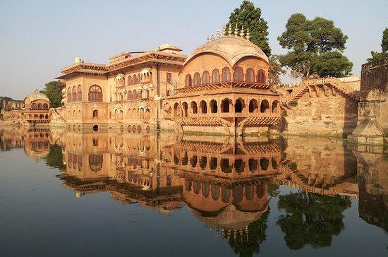 Independent 6-Day Tour of Delhi, Deeg...