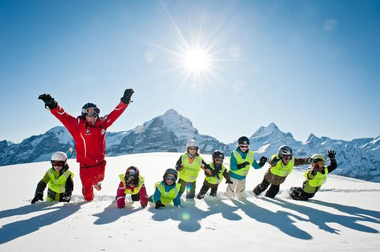 Half-Day Beginner Ski or Snowboard Lesson in Grindelwald from...