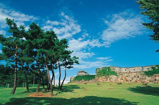 Suwon Hwaseong Fortress Half-Day