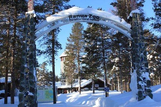 Ranua Zoo Trip de Rovaniemi