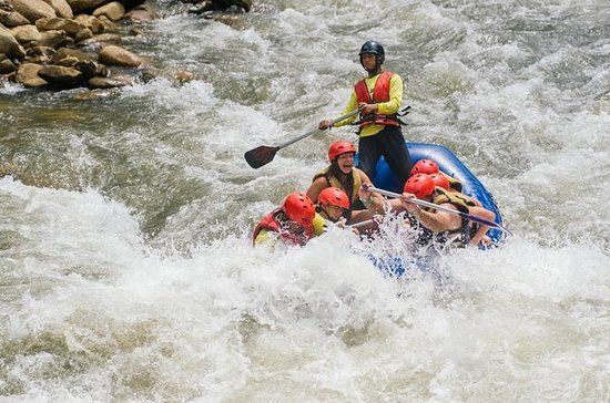 Rafting in acque bianche con