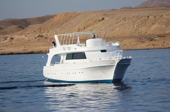 Privat båtkryssning med grill och ...