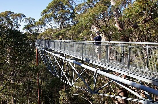 3-Day South West Tour from Perth