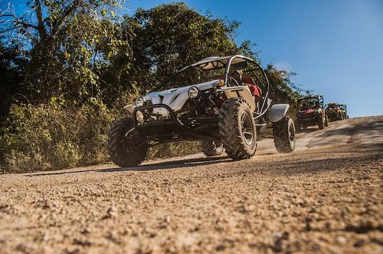 Buggy-Tour in Playa del Carmen mit ...