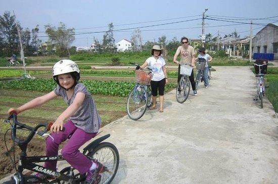Giro in bicicletta di mezza giornata