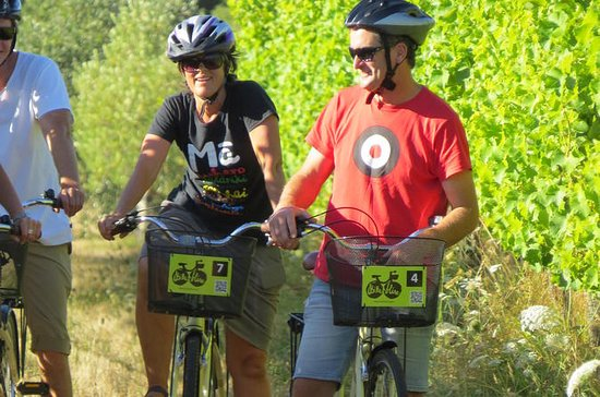 Aluguer de Bicicletas com Região do...