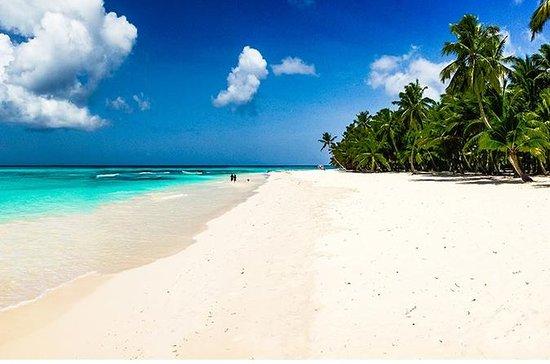 Day Trip Saona Island from Punta Cana