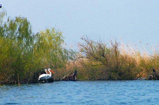 Tour del Delta del Danubio de 4 días...