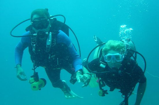 Try Diving in the beautiful Andaman...
