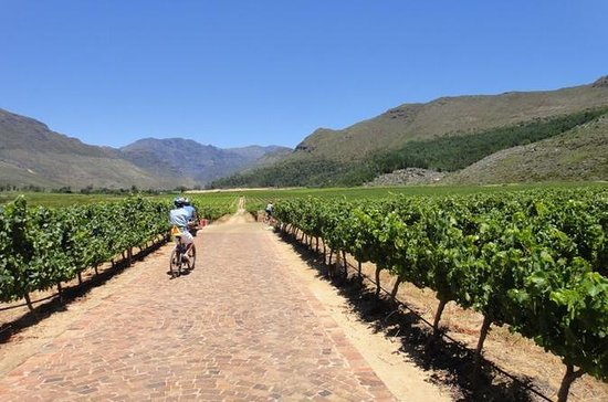 Franschhoek Biking and Wine Tasting...