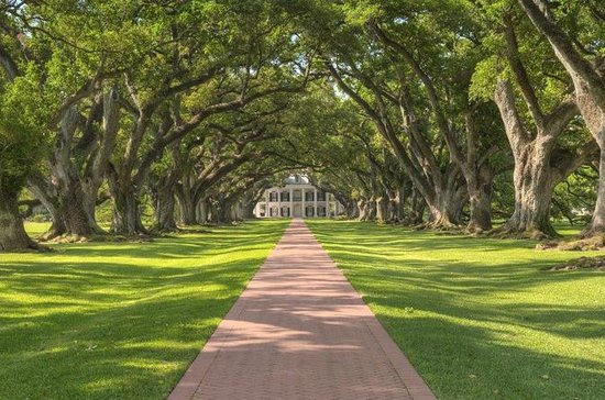Oak Alley Plantation Tour With ...
