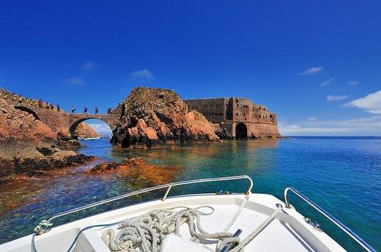 Private Tour: Berlenga Grande Day...