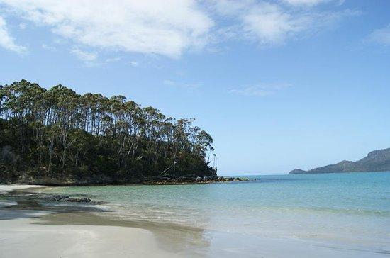 Viagem de um dia pela Ilha Bruny...