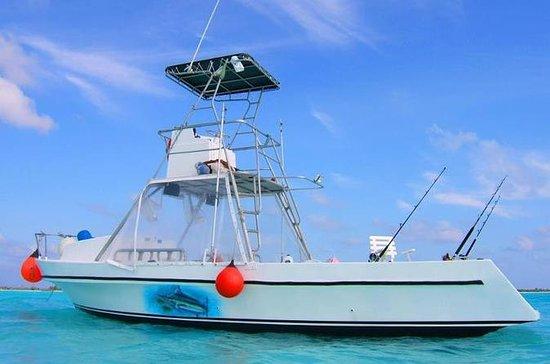 Deep Sea Fishing Tour and Beach Break from Cozume
