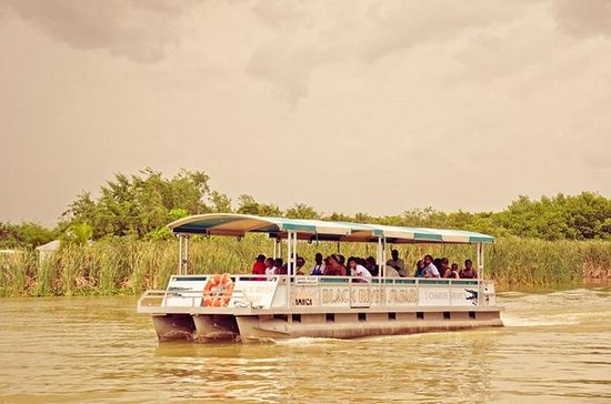 Black River Safari Tour from Montego...