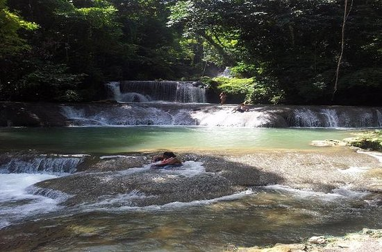 Private YS Falls Tour von Montego Bay