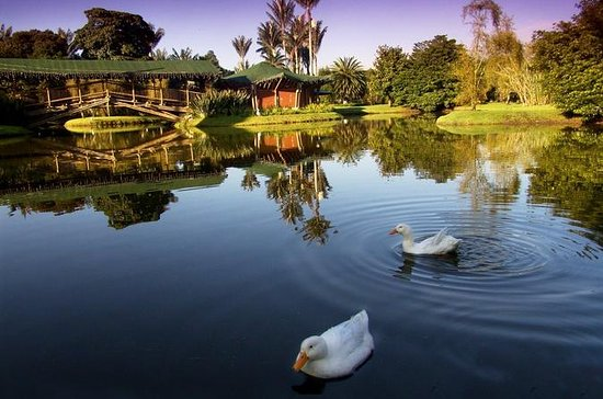 Privater Tour: Botanischer Garten...