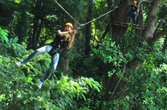 3-Hour Zip Line Jungle Adventure from...