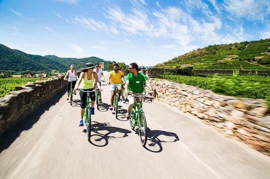 Full-Day Wine-Tasting Bike Tour from...