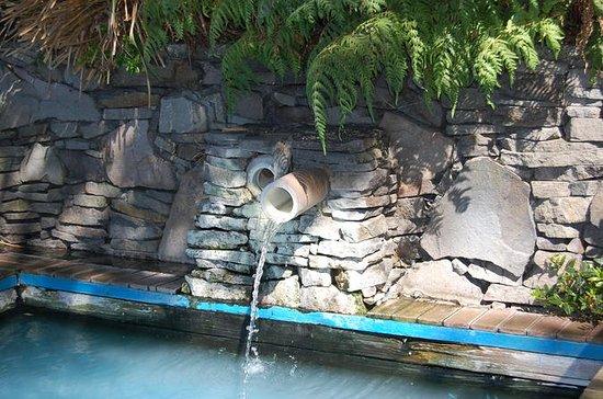 Les sources chaudes du lac Rotorua et...