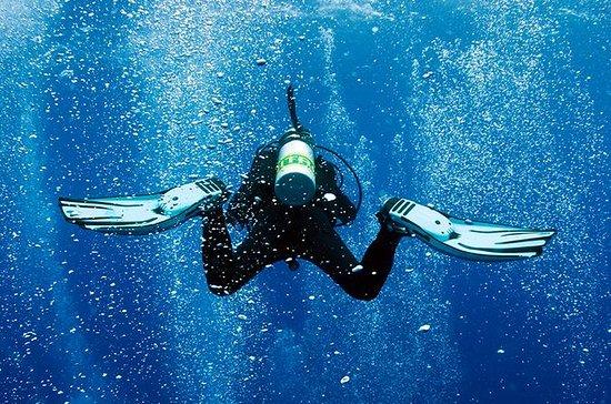 認定ダイバー向けダブルタンク ダイビング